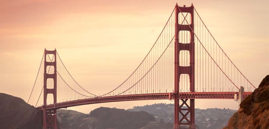 Stay Alfred - San Francisco